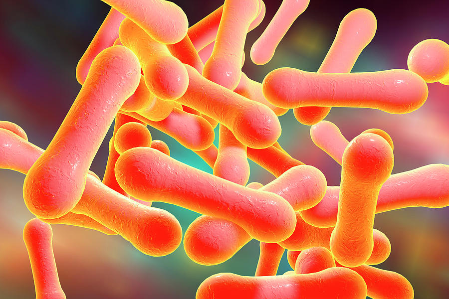 Photo of کورینه باکتریوم دیفتریه: ویژگی ها, بیماری زایی و پیشگیری
