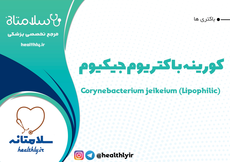 Photo of کورینه باکتریوم جیکیوم یا Corynebacterium jeikeium