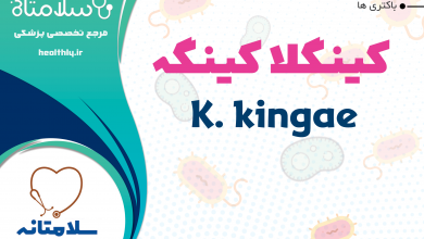 Photo of کینگلا کینگه یا K. kingae فلور نرمال حلق و دهان و عامل آرتریت سپتیک در کودکان
